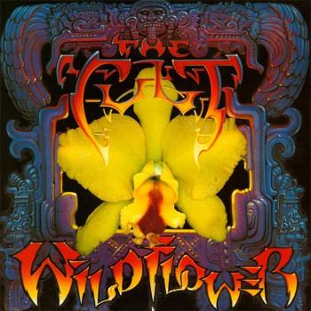 The Cult 'Wild Flower' single cover