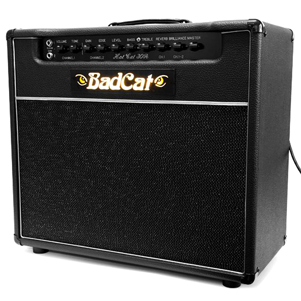 Billy Duffy's Bad Cat amp